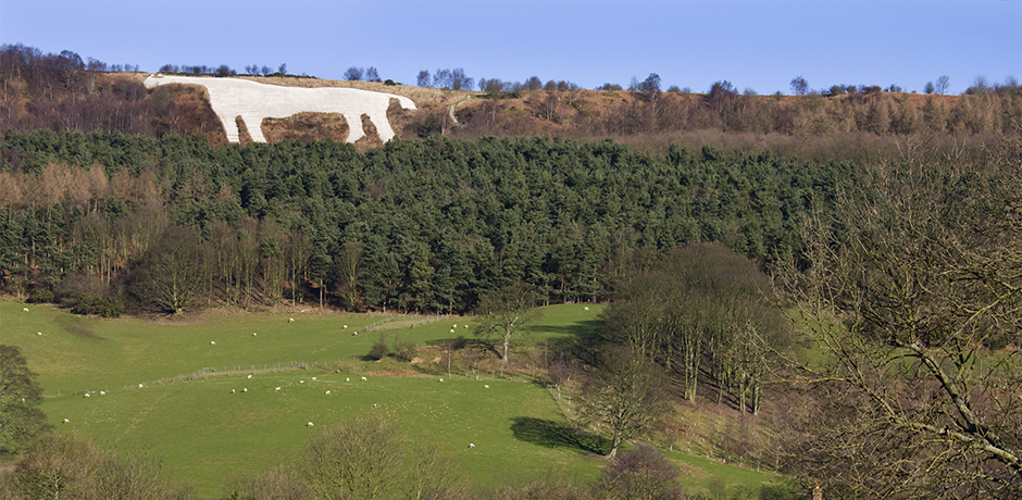 Go for a ramble at the Sutton Bank National Park Centre, Thirsk